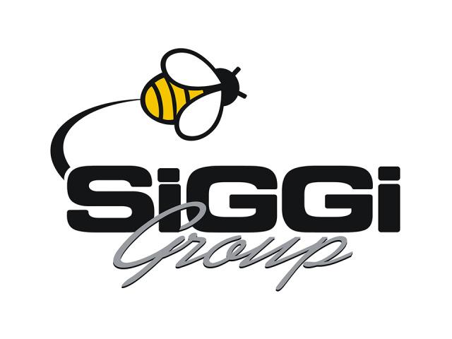 Siggi Spot – 2007